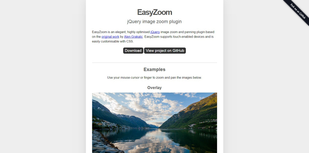 jQuery Image Zoom Plugins for Beautifying Your Websites - BestDevList