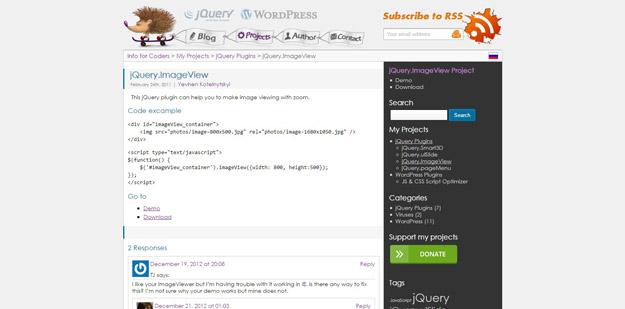jQuery Image Zoom Plugins for Beautifying Your Websites - BestDevList