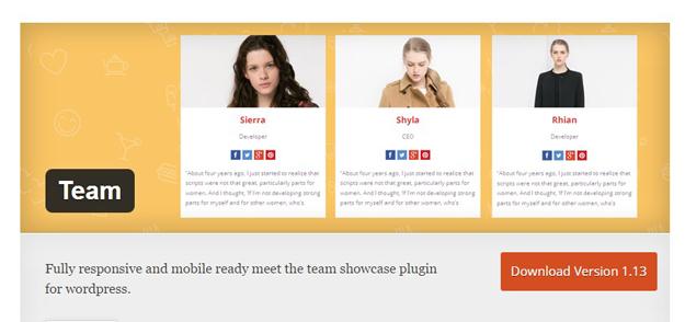 best meet the team wordpress plugin membership